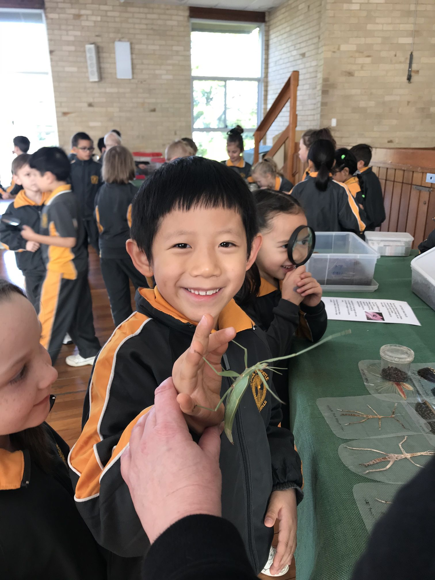 Year 1 Minibeast Incursion 2018 08