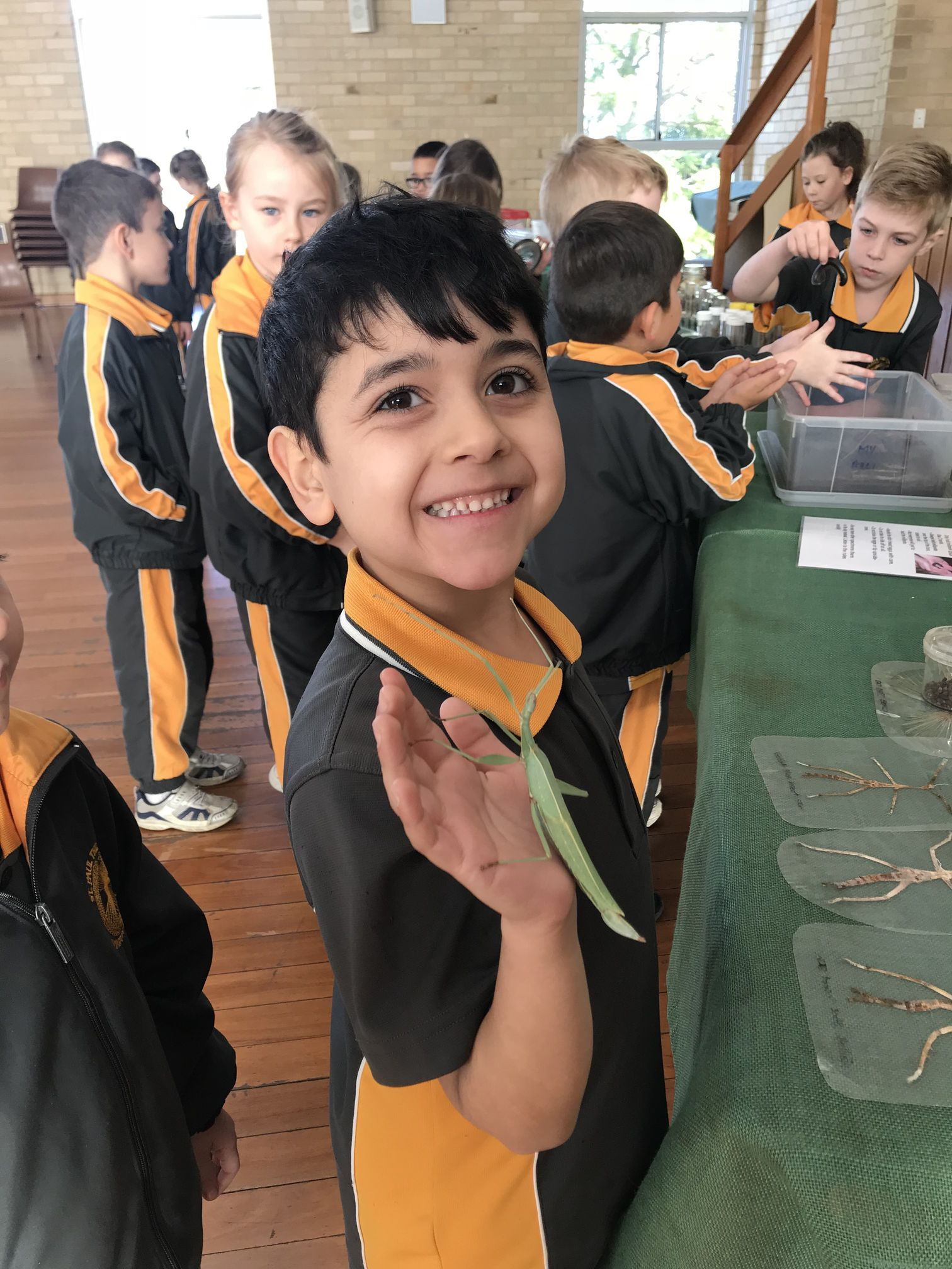 Year 1 Minibeast Incursion 2018 10