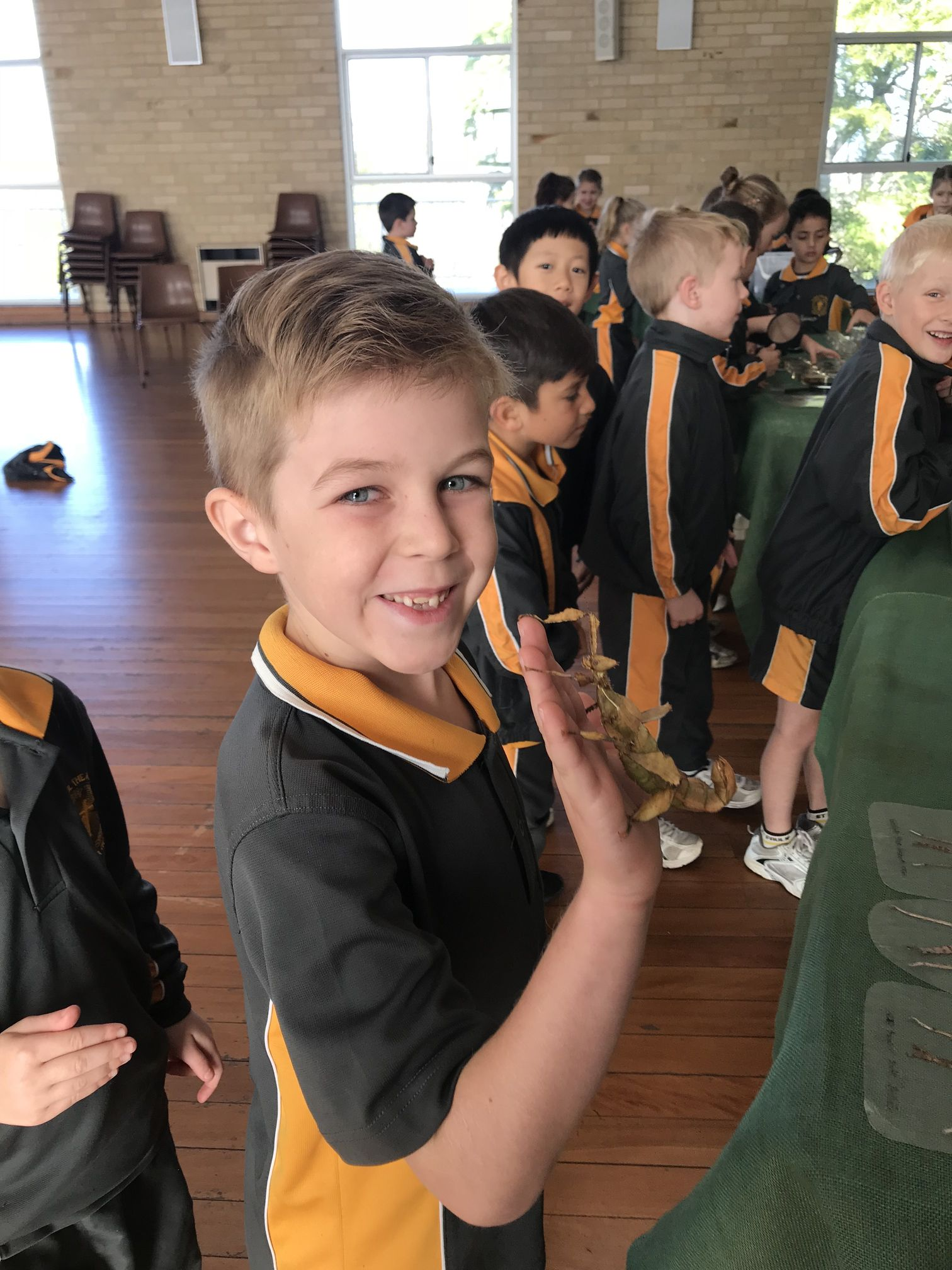 Year 1 Minibeast Incursion 2018 12