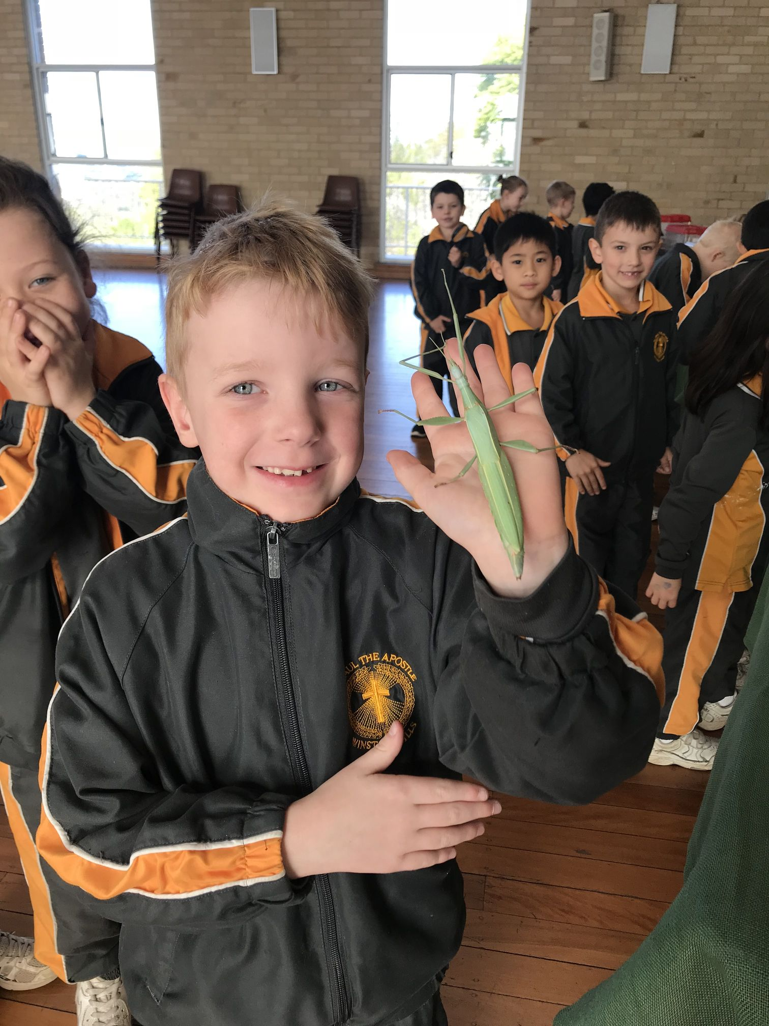 Year 1 Minibeast Incursion 2018 16