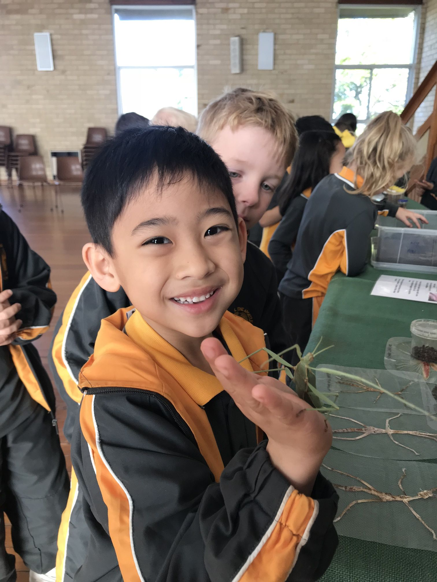 Year 1 Minibeast Incursion 2018 17