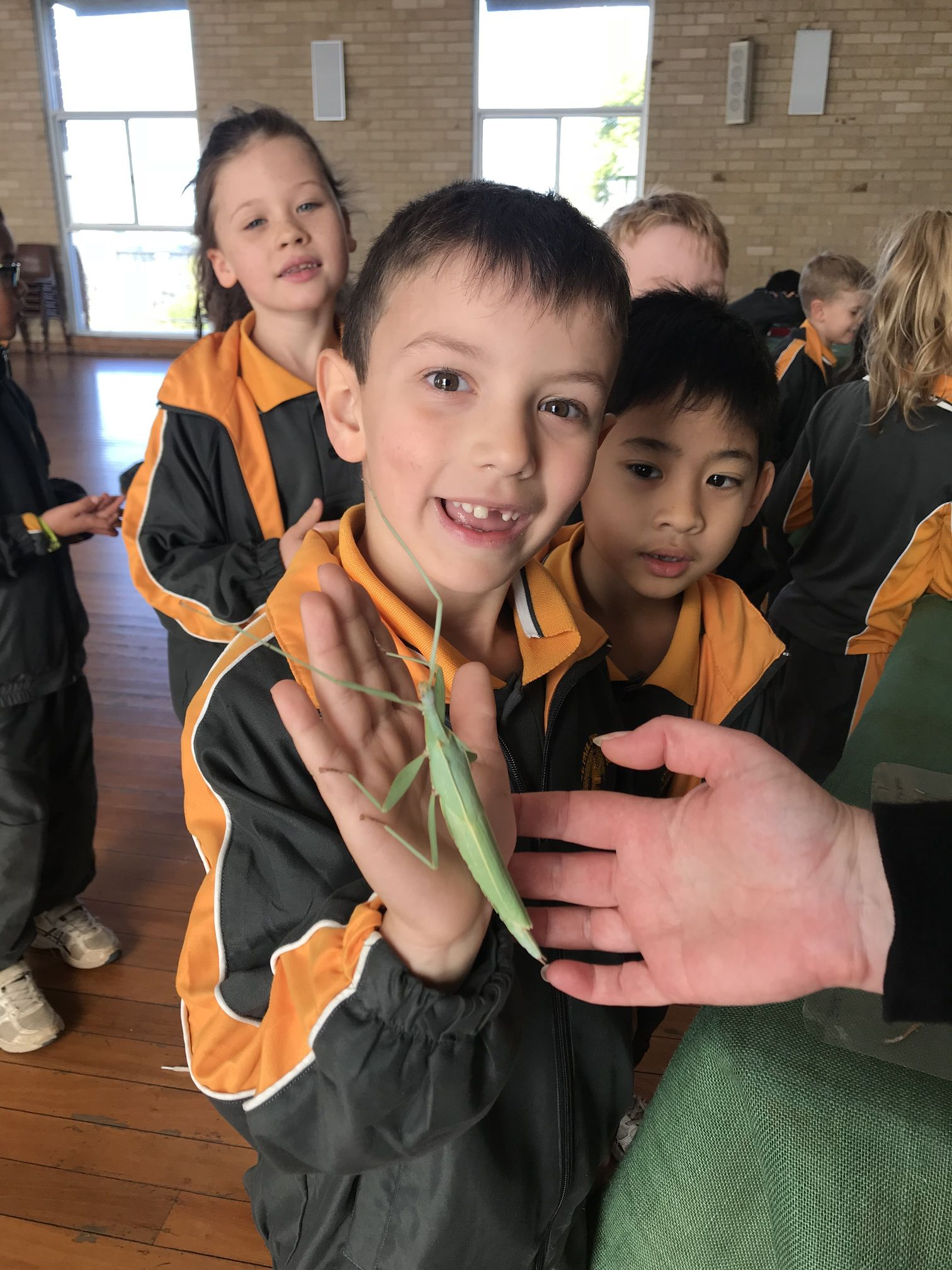 Year 1 Minibeast Incursion 2018 18