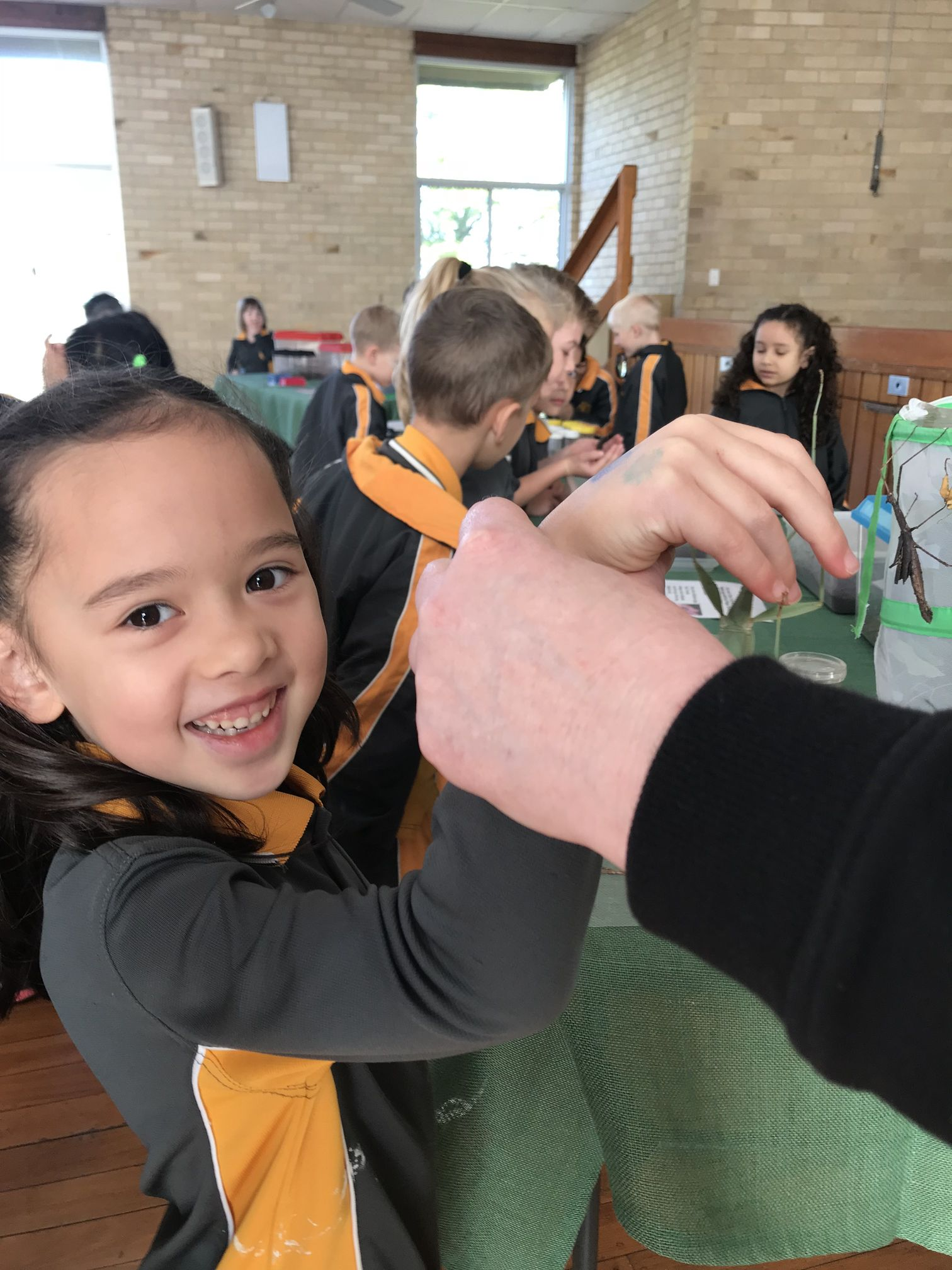 Year 1 Minibeast Incursion 2018 22