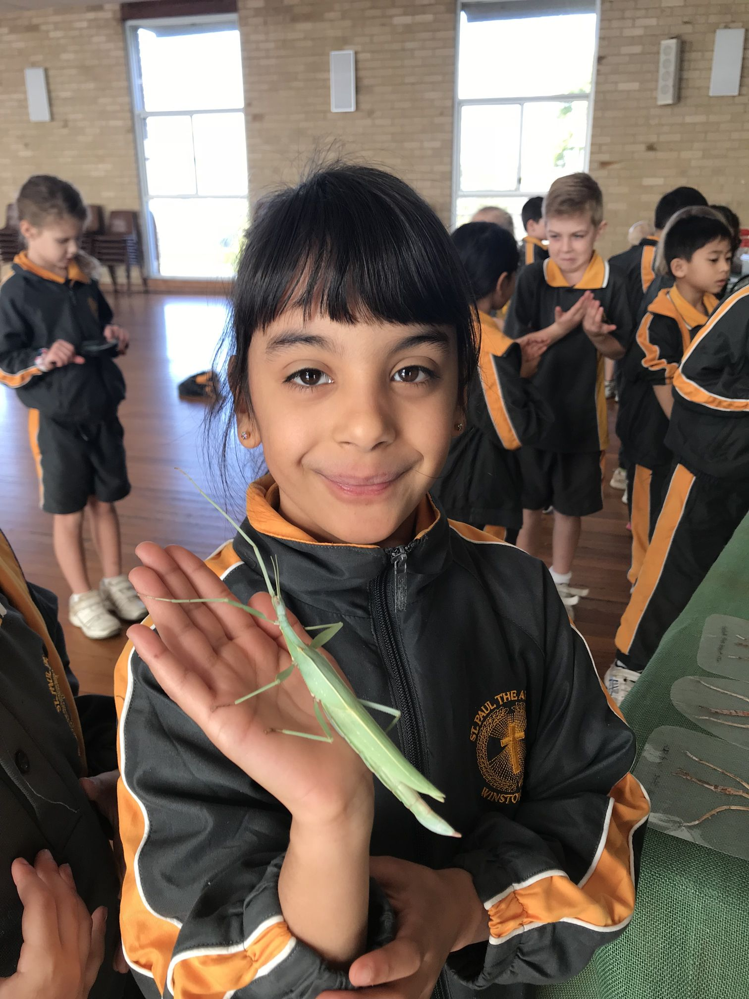 Year 1 Minibeast Incursion 2018 24