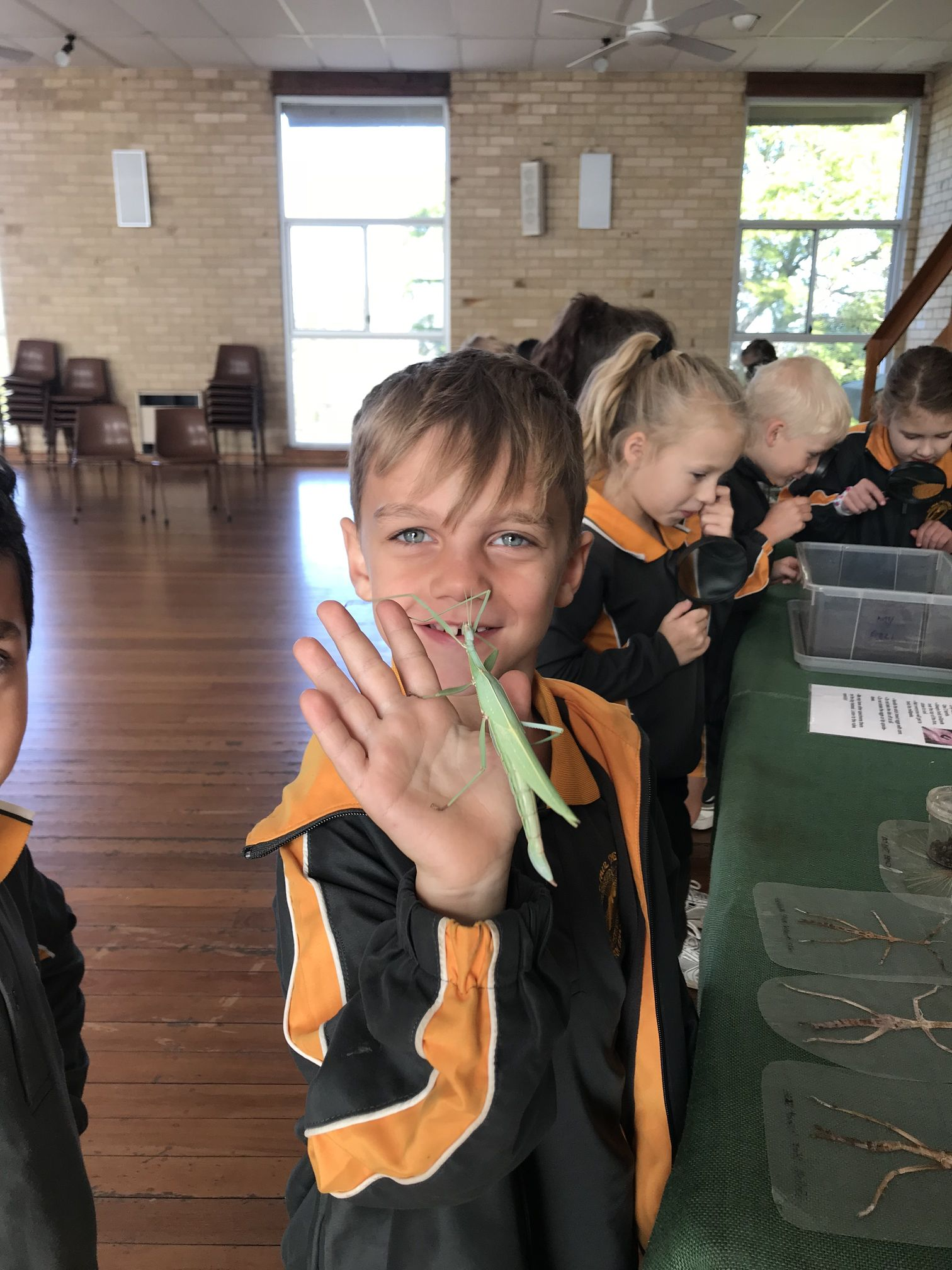 Year 1 Minibeast Incursion 2018 27
